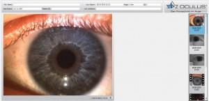 Detailaufnahme Iris